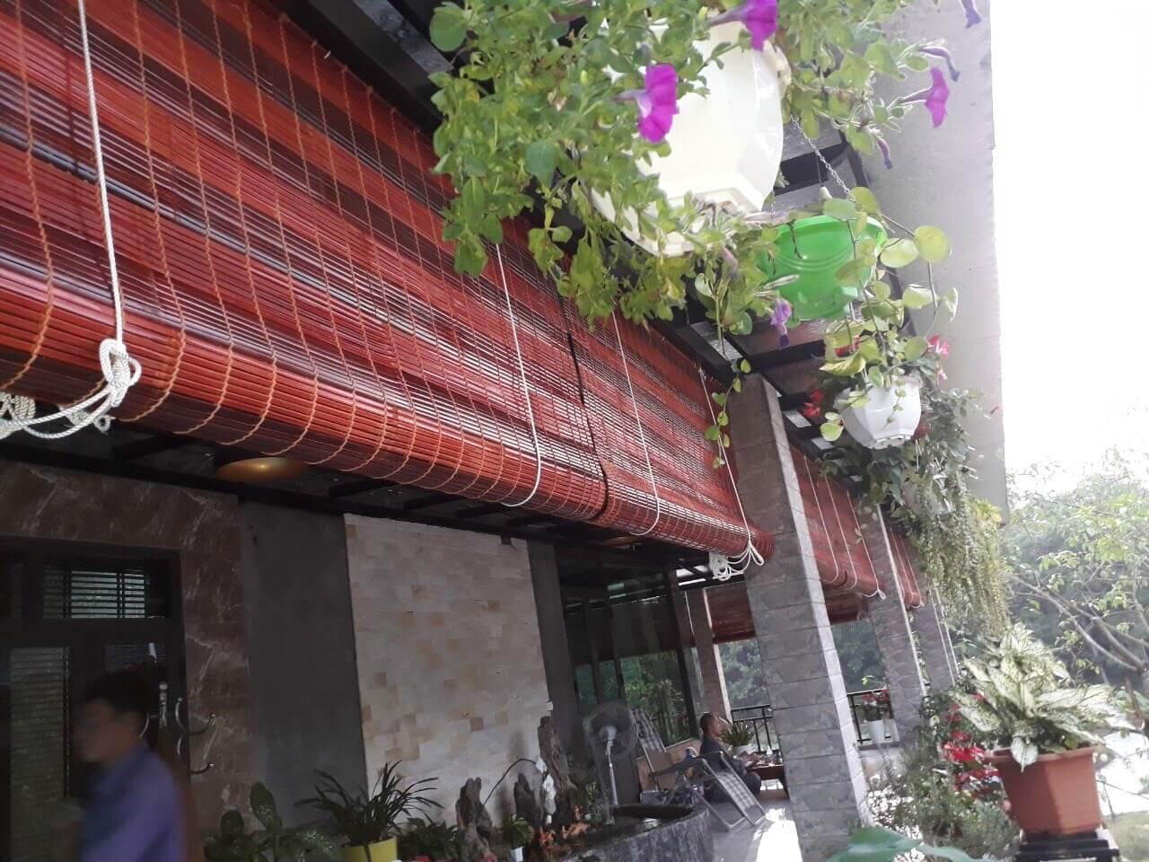 Rèm tre trúc nan nhỏ thường được che nắng mái hiên và sân nhà